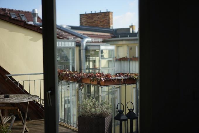 Systemische Paartherapie Paarberatung Beratung Berlin Ferdinand Krieg Blick auf die Terrasse